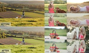 数码照片添加暖色艺术效果LR预设