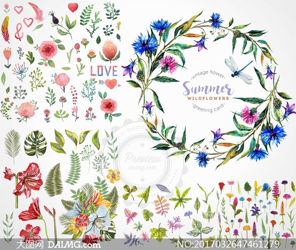 水彩素材花朵鲜花花卉植物边框心形桃心叶子绿叶树叶蜻蜓百合花羽毛