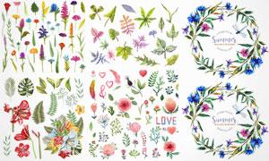 水彩风格鲜花植物装饰边框矢量素材