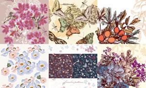 蝴蝶与花鸟等复古装饰图案矢量素材