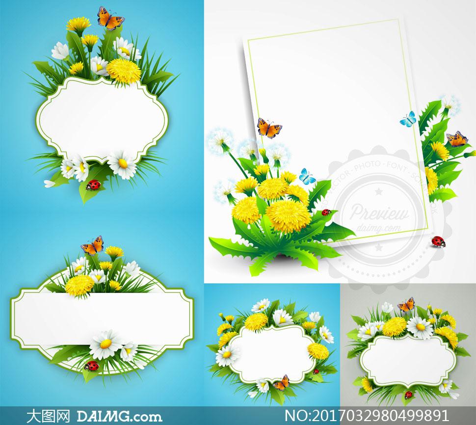 素材春天春季逼真鲜花花朵花卉植物蝴蝶边框空白白色菊花 注意事项