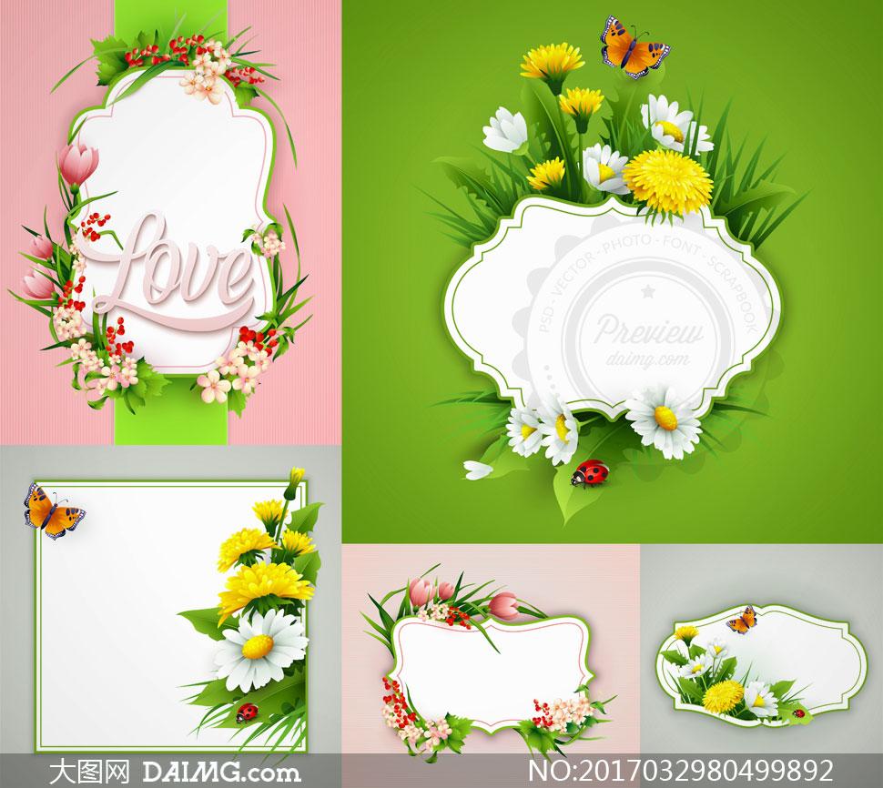 春季逼真鲜花花朵花卉植物蝴蝶边框空白白色菊花花草love 注意事项
