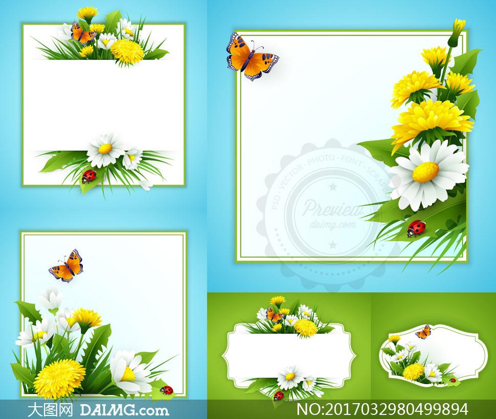 春天春季逼真鲜花花朵花卉植物蝴蝶边框空白白色菊花蝶恋花 注意事项
