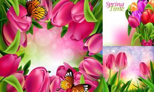 春天蝴蝶与鲜艳郁金香花朵矢量素材