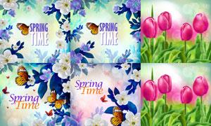 蝴蝶与郁金香鲜花边框装饰矢量素材