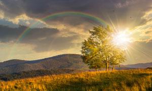树木山峦彩虹自然风景摄影高清图片