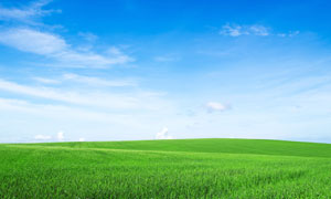 蓝天白云与望不到边的农田高清图片