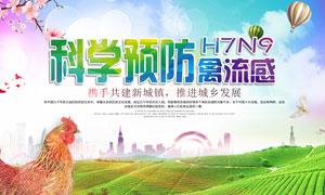 科学预防禽流感海报设计PSD素材