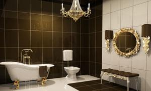 欧式奢华风格浴室装修效果高清图片