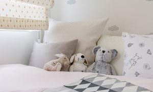 睡在被窝里的毛绒玩具摄影高清图片