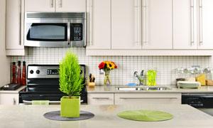 厨房橱柜与台面上的绿植等高清图片