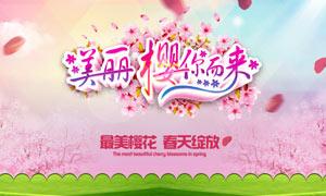 春节樱花节宣传海报设计PSD素材