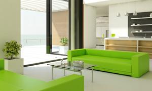 房间沙发植物与绿色的沙发高清图片