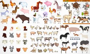 奶牛山羊与公鸡等动物主题矢量素材
