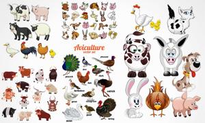 孔雀母鸡与可爱兔子等动物矢量素材