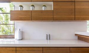 厨房橱柜上的盆栽植物摄影高清图片