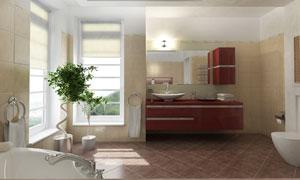 摆放有绿叶植物的浴室摄影高清图片