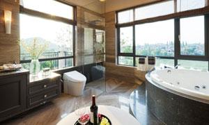 浴室插花与浴缸马桶等卫浴高清图片