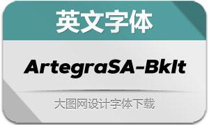 ArtegraSansAlt-BlackItalic(字体)