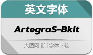 ArtegraSans-BlackItalic(英文字体)