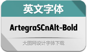 ArtegraSansCnAlt-Bold(英文字体)