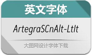 ArtegraSansCnAlt-LtIt(英文字体)