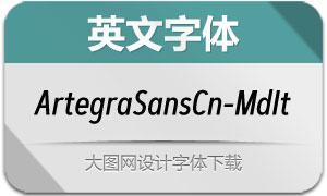 ArtegraSansCn-MedIta(英文字体)