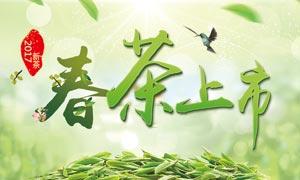 春茶上市小清新主题海报设计PSD素材