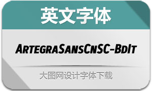 ArtegraSansCnSC-BdIt(英文字体)