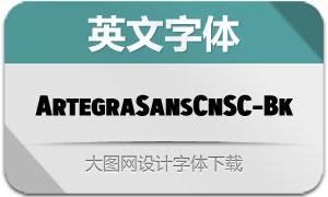 ArtegraSansCnSC-Black(英文字体)