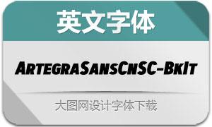 ArtegraSansCnSC-BkIt(英文字体)