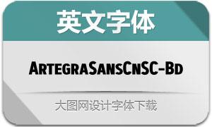 ArtegraSansCnSC-Bold(英文字体)