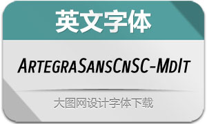 ArtegraSansCnSC-MdIt(英文字体)