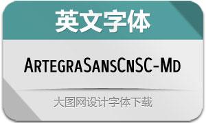 ArtegraSansCnSC-Md(英文字体)