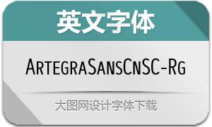 ArtegraSansCnSC-Reg(英文字体)