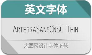 ArtegraSansCnSC-Thin(英文字体)