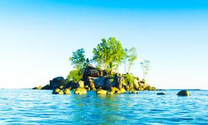 海面上的岩石树木风光摄影高清图片