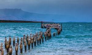 远山与海水中的木桩群摄影高清图片