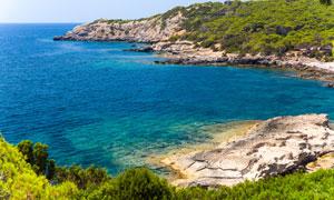 海湾树木植被与湛蓝的海水高清图片