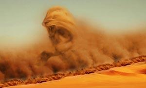 创意的沙尘暴狮子效果PS教程素材