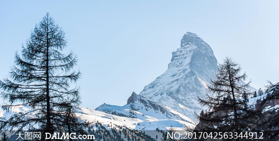 雪山与山间的树木风景摄影高清图片