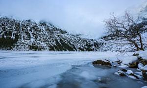 冰雪笼罩下的山林风光摄影高清图片