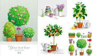 绿色植物盆栽与园艺小工具矢量素材
