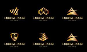 黑底金色效果标志设计矢量素材集V5