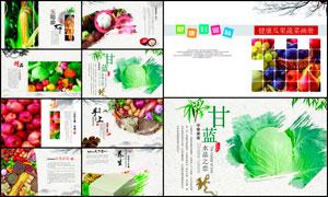 健康瓜果蔬菜画册设计模板PSD素材