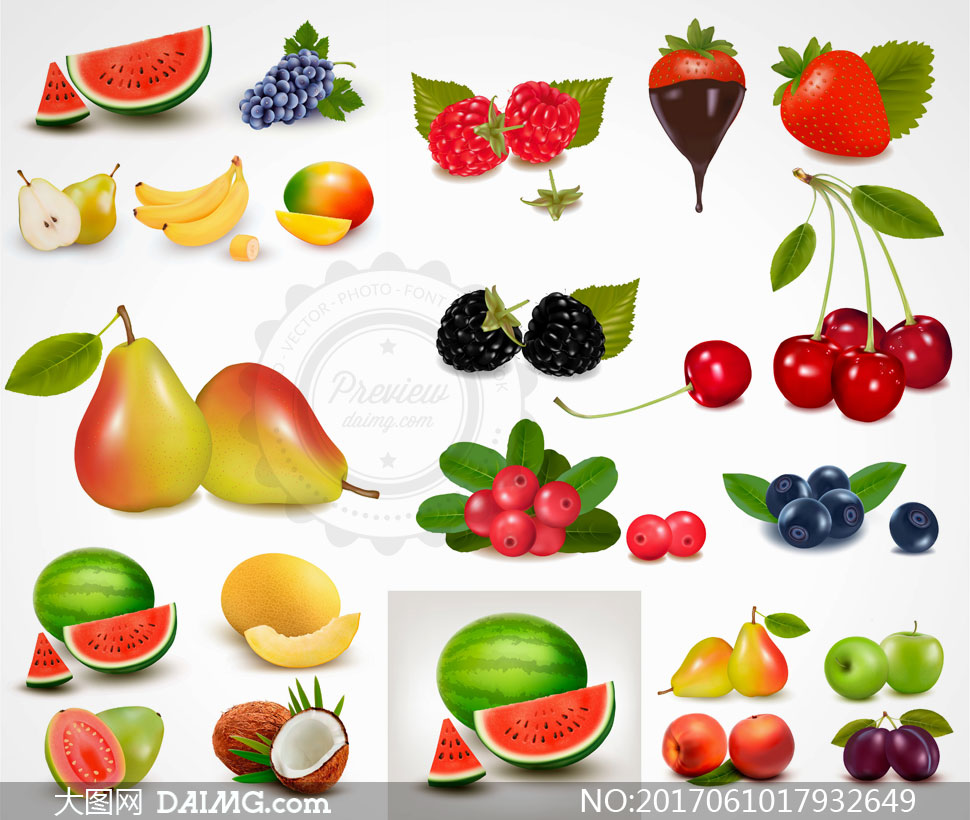 蓝莓樱桃与西瓜椰子等瓜果矢量素材