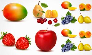 樱桃草莓与苹果等逼真瓜果矢量素材