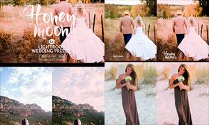 婚礼照片后期粉色艺术效果LR预设