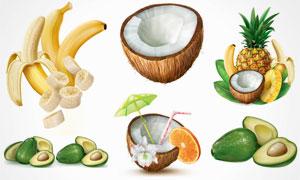 牛油果与菠萝香蕉片等瓜果矢量素材