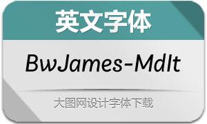 BwJames-MediumItalic(英文字体)